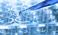 Десять научных проектов красноярских вузов получили поддержку Министерства образования и науки России